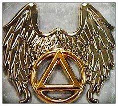 Winged Symbol Lapel Pin